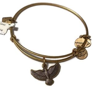 Alex and Ani Spirit of the Eagle Charm Bracelet